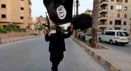 Mỹ tiêu diệt thủ lĩnh tuyên truyền của IS