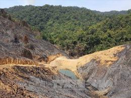 Chuyển cơ quan Công an điều tra vụ phá rừng quy mô lớn tại Đắk Nông