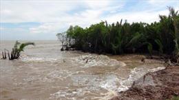 Công trình ngăn chặn xói lở bờ biển cũng bị... xói lở