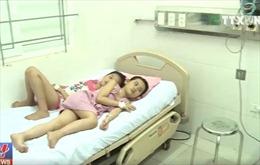 13 trẻ tiểu học nhập viện do ăn hạt quả ngô đồng