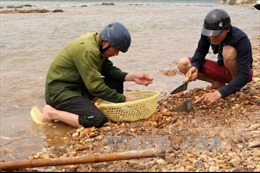 Đổ xô đào bới lòng sông Chảy để tìm đá quý theo tin đồn
