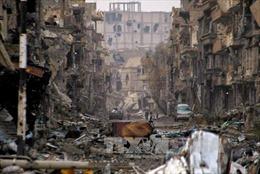 OPCW: Cáo buộc tấn công vũ khí hóa học tại Syria là 'có căn cứ'