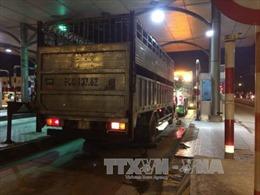 Xe tải chống hiệu lệnh, đâm tử vong một cảnh sát giao thông