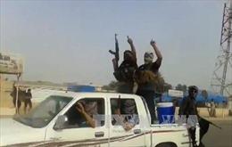 IS đang đàm phán thành lập liên minh với Al-Qaeda