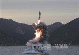 Diễn biến nóng, HĐBA LHQ nhất trí lên án vụ phóng tên lửa của Triều Tiên