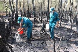 Vảy tàn thuốc lá làm cháy hơn 36 ha rừng tràm