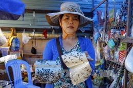 Tập trung diệt ruồi tại Công ty Kwong Lung - Meko sau vụ hỏa hoạn