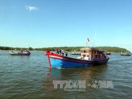 Tàu cá bị tàu chở container chưa rõ quốc tịch đâm chìm trên biển