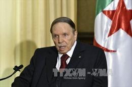 Algeria chặn đứng kế hoạch khủng bố đẫm máu trong ngày bầu cử quốc hội
