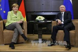 Lãnh đạo Đức, Nga lên tiếng về việc can thiệp bầu cử