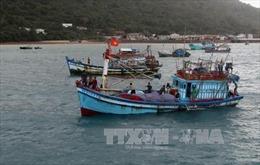 Bà Rịa-Vũng Tàu: Kịp thời đưa ngư dân nguy kịch trên biển về bờ cấp cứu