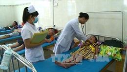 Hà Nội: 13.982 người bị sốt xuất huyết, bệnh nhân có tại tất cả các quận, huyện