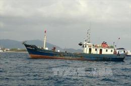 Tàu cá chìm do va chạm trên biển, đã cứu được 2/4 thuyền viên