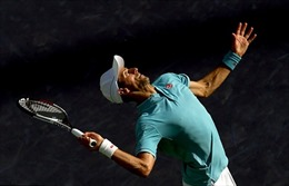 Mất phương hướng, Novak Djokovic sa thải toàn bộ đội ngũ huấn luyện gắn bó 10 năm