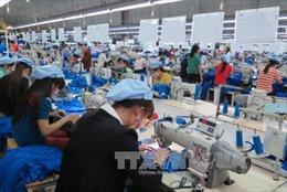 Thủ tướng yêu cầu chấn chỉnh công tác thanh tra, kiểm tra doanh nghiệp