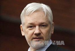 Thụy Điển chấm dứt điều tra 'cha đẻ' WikiLeaks vụ xâm hại tình dục