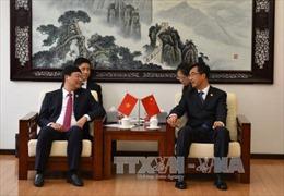 Giao lưu thanh niên Việt Nam - Trung Quốc góp phần củng cố quan hệ hai nước 