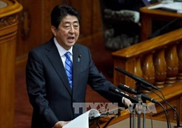 Nhật Bản nỗ lực theo đuổi TPP 11