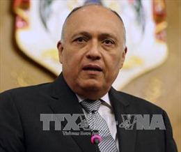 Ngoại trưởng Ai Cập khẳng định khủng bố là thách thức lớn nhất
