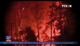 Cháy rừng Sóc Sơn và bài học phòng chống 'giặc lửa' mùa nắng nóng