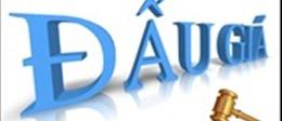 Hà Nội thanh tra 10 doanh nghiệp bán đấu giá tài sản