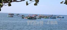 Phó Thủ tướng chỉ đạo gỡ vướng về bảo hiểm thủy sản