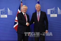 Anh và EU chính thức khởi động tiến trình đàm phán
