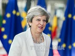 Phản ứng trái chiều về đề xuất của Thủ tướng Anh đối với công dân EU