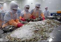Ngành tôm xuất khẩu có nguy cơ 'bỏ trống' thị trường 800 triệu USD