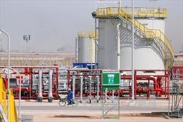 Giá dầu mỏ thế giới giảm mạnh