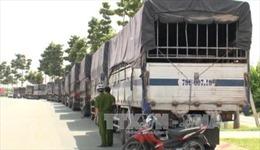 Hàng chục xe tải nặng, chở cát xây dựng không rõ nguồn gốc