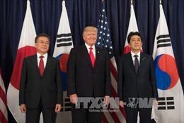 Lãnh đạo Mỹ, Nhật, Hàn tranh thủ bàn về Triều Tiên trước G20