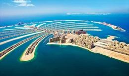 Doanh nghiệp xuất khẩu nông sản, trái cây sang UAE coi chừng bị lừa