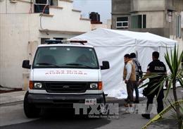 Thảm sát tại Mexico, 11 người thiệt mạng