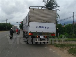 Người dân truy đuổi xe tải gây tai nạn bỏ trốn khỏi hiện trường