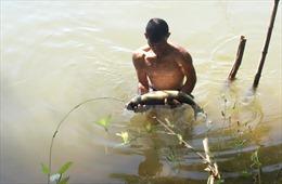 Bà con nuôi cá trên sông Đà bị thiệt hại lớn nhất từ trước đến nay