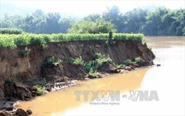 Sông Đồng Nai đã vắng bóng những 'vòi bạch tuộc'