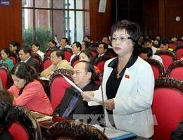 Truy tố nguyên đại biểu Quốc hội Châu Thị Thu Nga