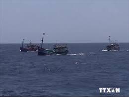 Bình Định khẩn trương tìm kiếm 5 ngư dân mất tích trên biển