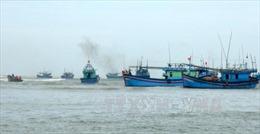 Chưa tìm thấy 5 ngư dân Bình Định gặp nạn tại quần đảo Hoàng Sa