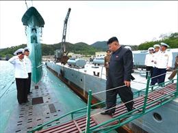 Mỹ lo ngại trước hoạt động 'bất thường cao độ' của tàu ngầm Triều Tiên