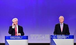 Đàm phán Brexit có thể hoãn đến tháng 12/2017