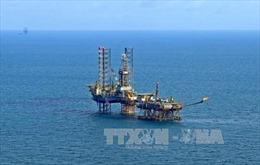 Phê duyệt danh mục doanh nghiệp cổ phần hóa của Tập đoàn Dầu khí