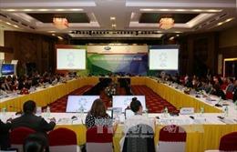 Thực hiện khung chiến lược APEC về tăng cường an ninh lương thực