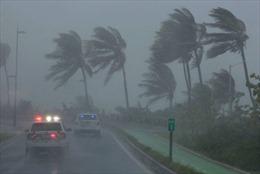 Anh ban bố tình trạng khẩn cấp tại quần đảo Virgin do bão Irma