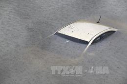 Harvey, Irma nằm trong những cơn bão gây thiệt hại nặng nề nhất cho nước Mỹ