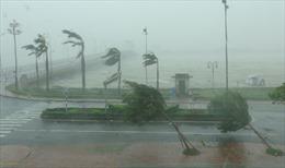 Hệ thống bệnh viện thiệt hại nặng do bão số 10