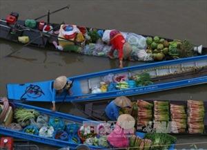 Muôn màu giao thông đường thủy đồng bằng sông Cửu Long