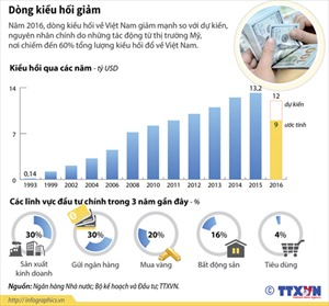 Dòng kiều hối về Việt Nam giảm mạnh