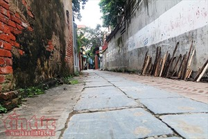 Con đường lát đá xanh độc đáo nhất Việt Nam